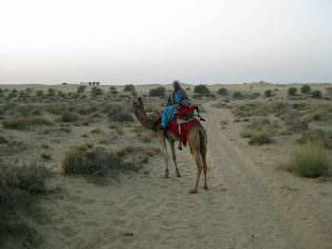 Sam Dunes near Jaisalmer camel trek © J S Bridges